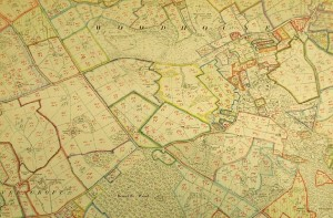 National Farm Survey Map for Woodhouse, TNA, MAF 73/22